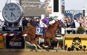 California Chrome, ridden by jockey Victor Espinoza, wins the 139th Preakness Stakes horse race at Pimlico Race Course.