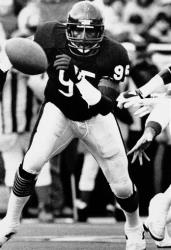 This Jan. 16, 1986 file photo shows Chicago Bears defensive end Richard Dent chasing a loose ball during the NFL playoffs in Chicago.