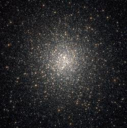 This stock photo shows a dense swarm of stars.
