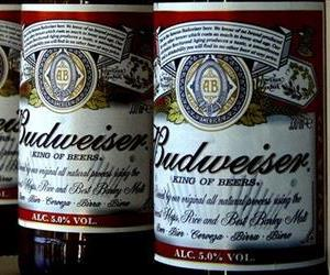 This Jan. 27, 2009 file photo shows bottles of Budweiser beer are at the Stag Brewery in London.