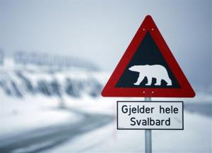 A sign warning of polar bears is seen Feb. 25, 2008 outside of Longyearbyen, Norway on the Arctic archipelago of Svalbard, as far north as you can fly on a scheduled flight.