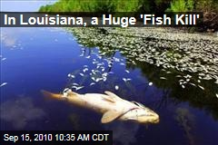 In Louisiana, a Huge 'Fish Kill'