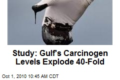 Study: Gulf's Carcinogen Levels Explode 40-Fold