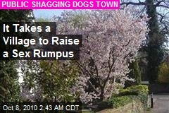 It Takes a Village to Raise a Sex Rumpus