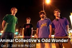 Animal Collective's Odd Wonder