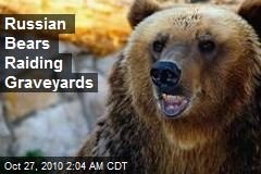 Russian Bears Raiding Graveyards