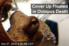 Cover Up Floated In Octopus Death