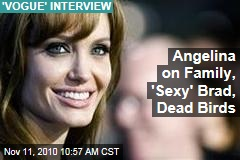 Angelina on Family, 'Sexy' Brad ... Dead Birds