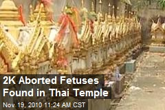 2K Aborted Fetuses Found in Thai Temple