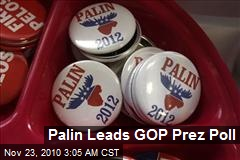 Palin Leads GOP Prez Poll