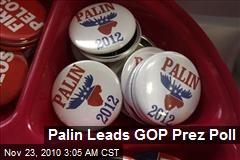 Palin Leads GOP Prez Poll