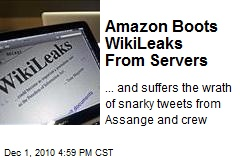 Amazon Boots WikiLeaks From Servers