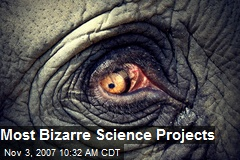 Most Bizarre Science Projects