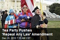 Tea Party Pushes 'Repeal Any Law' Amendment