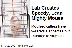 Lab Creates Speedy, Lean Mighty Mouse