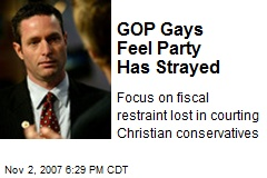 GOP Gays Feel Party Has Strayed
