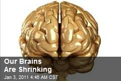 Our Brains Are Shrinking!