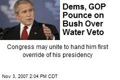 Dems, GOP Pounce on Bush Over Water Veto