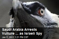 Saudi Arabia Arrests Vulture ... as Israeli Spy