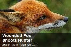 Wounded Fox Shoots Hunter