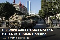 US: WikiLeaks Cables Not the Cause of Tunisia Uprising