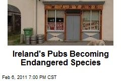 Ireland's Pubs Becoming Endangered Species