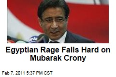 Egyptian Rage Falls Hard on Mubarak Crony