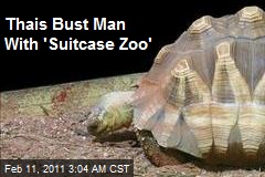 Thais Bust Man With 'Suitcase Zoo'
