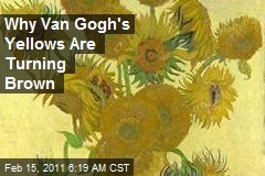 Why Van Gogh's Yellows Are Turning Brown