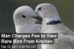 Man Charges Fee to View Bird From Kitchen Window