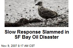 Slow Response Slammed in SF Bay Oil Disaster