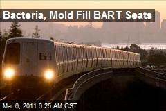 Bacteria, Mold Fill BART Seats