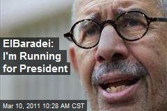 ElBaradei: I'm Running for President