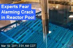Experts Suspect Alarming Crack in Reactor Pool