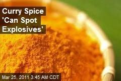 Curry Spice 'Can Spot Explosives'