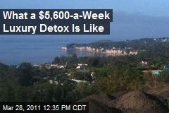 What a $5,600-a-Week Luxury Detox Is Like