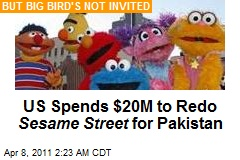 US Spends $20M on Sesame Street Redo for Pakistan