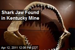 Shark Jaw Found in Kentucky Mine