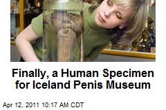 Finally, a Human Specimen for Iceland Penis Museum