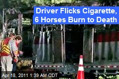 Driver Flicks Cig, 6 Horses Burn to Death