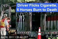 Driver Flicks Cig, 6 Horses Burn to Death