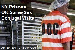 NY Prisons OK Same-Sex Conjugal Visits
