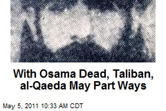 With Osama Dead, Taliban, al-Qaeda May Part Ways