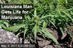 Louisianan Gets LIfe for Marijuana