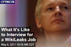 What It's Like to Be Interviewed by Julian Assange for a WikiLeaks Job