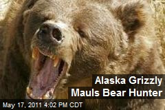 Alaska Grizzly Mauls Bear Hunter