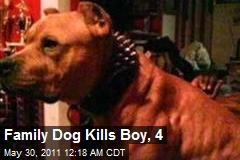 Family Dog Kills Boy, 4