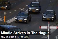 Ratko Mladic Arrives at the Hague; Enters UN Isolation Cell