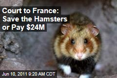 European Union Court to France: Save the Great Hamster of Alsace