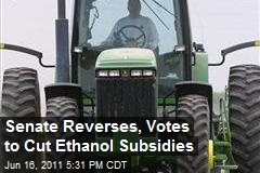 Senate Reverses, Votes to Cut Ethanol Subsidies